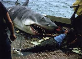 I collect Jaws Photos. Especially on the set pics
